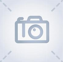 Мачтовый подъемник GTWY 8-125 (8м)